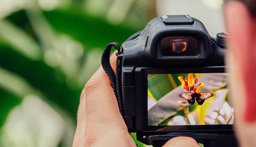 投稿画像 デザイン的な写真撮影 被写体を選ぶ - デザイン的な写真撮影